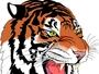 El Tigre Division Comercial