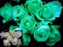 Acmelight Flower