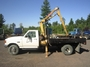 1998 Ford F450 SD con Grúa IMT 2815 Cap. 4.5 Tons.